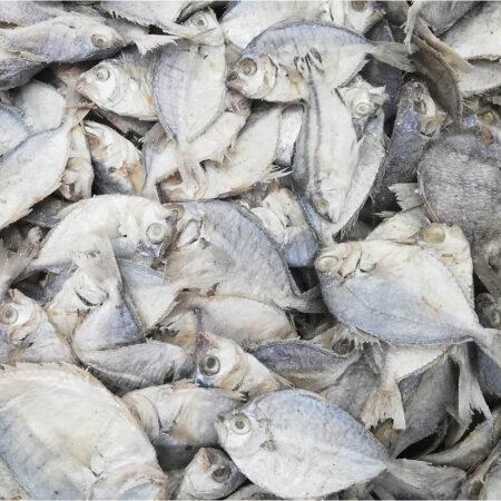 Malabar Trevally Karuvadu/Dry Fish Salted - 1kg