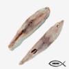 Dried Leather Skin Fish-Koda-Leather-Theera-Tholpaarai-Katta-Palai Meen-Paali-meenu-Queenfish-Champapara